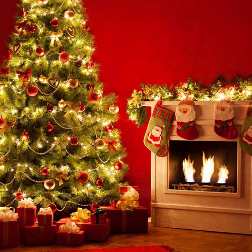 LED fairy string lights for christmas