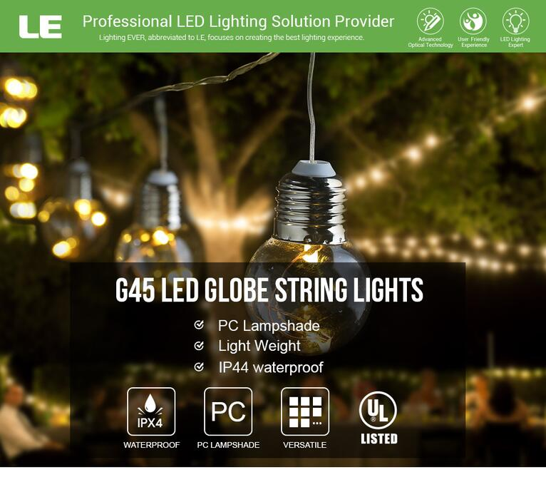 LED Globe Copper Wire String Lights
