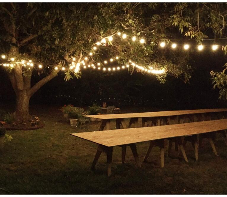 Warm White LED Globe Copper Wire String Lights for Wedding