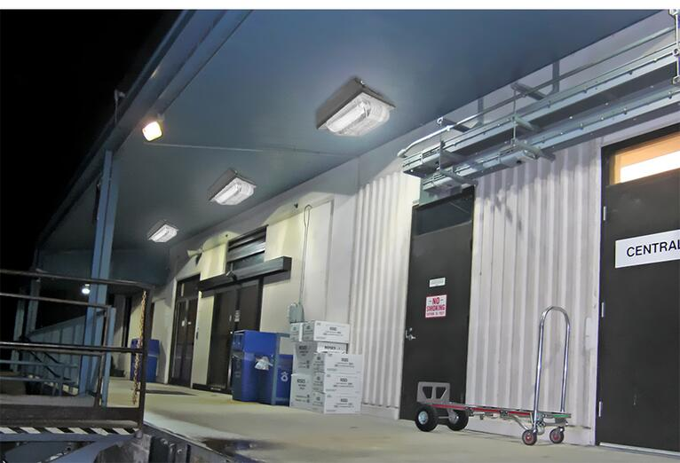 50W LED Canopy Lights for gyms